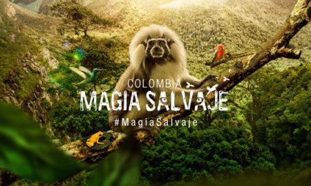 colombia-magia-salvaje